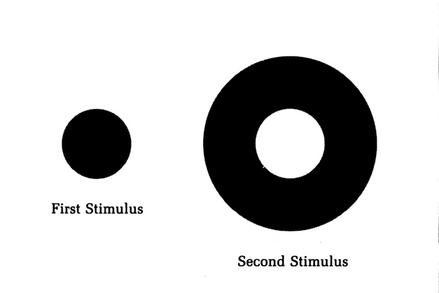 firstsecond-stimulus_.jpg